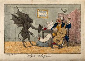 Origin of the gout